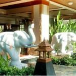 最近人気急上昇のスクンビットの格安ホテル「ロイヤル アイボリー スクンビット」